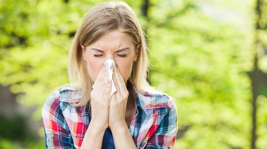 Holistic Remedies For Allergy Relief