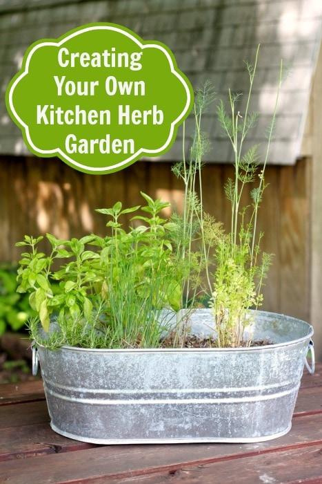 creating your very own kitchen herb garden with little effort