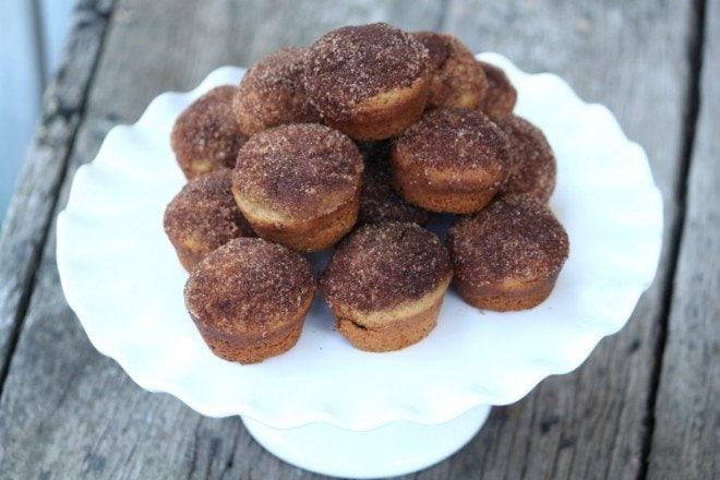 Cinnamon Sugar Breakfast Muffins