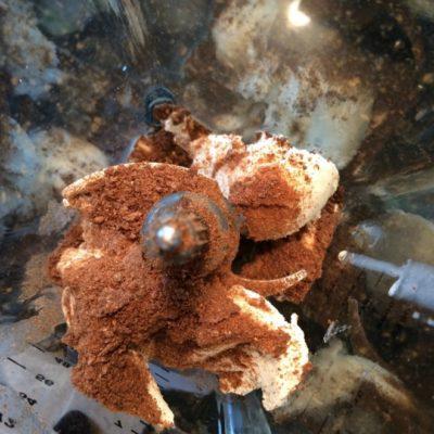 Chocolate Krave Peppermint Milk Shake