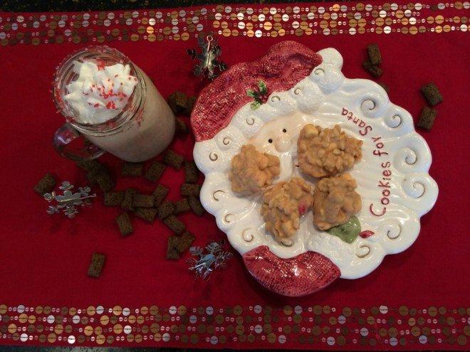 Santa Cookies and Milkshake
