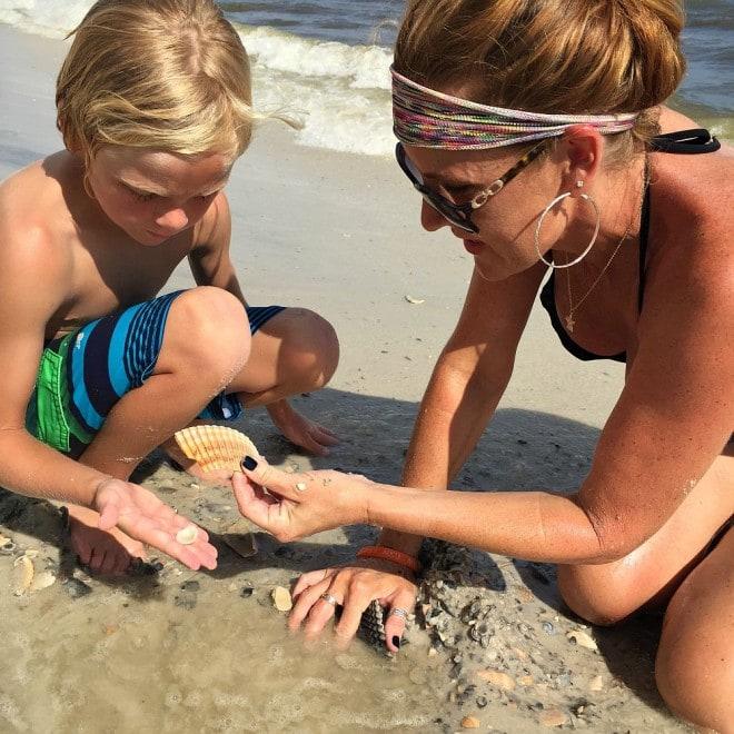 Gulf Shores Shells