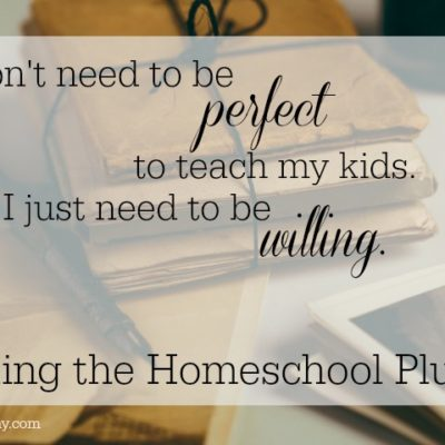 Taking the Homeschool Plunge
