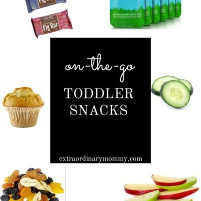 Toddler Snacks for Moms On The Go