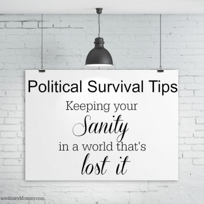 Political Survival Tips: Keeping Your Sanity in a World That's Lost It