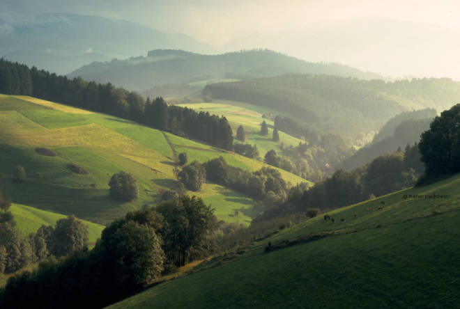 Planning A Road Trip through the Alps: Germany Black Forest