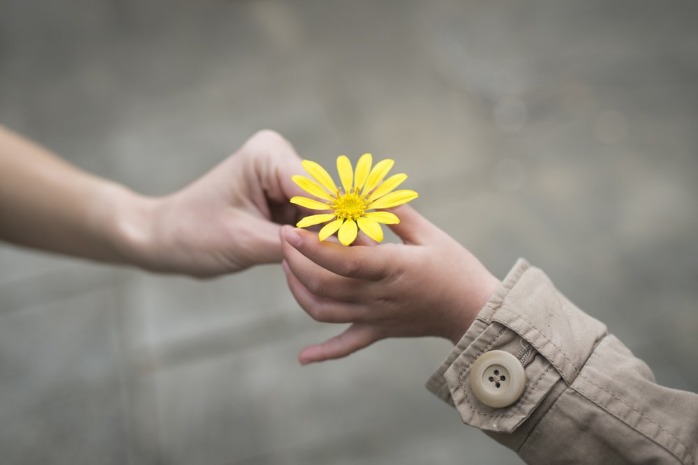 Spread Kindness: 25 Easy, Free things you can do TODAY | PrettyExtraordinary.com