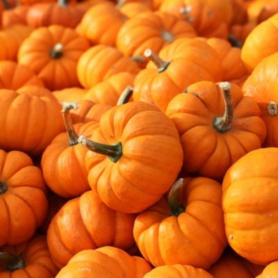 The Power of Pumpkin in Your Diet