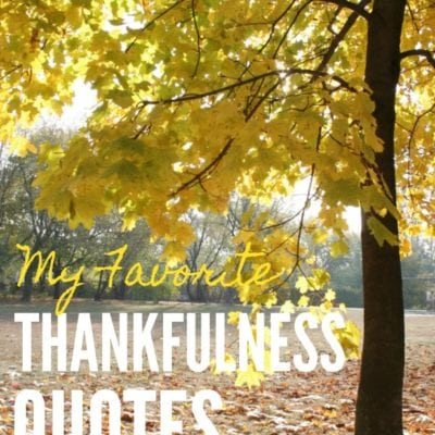 20 Thankfulness Quotes to Keep You Centered During a Hectic Holiday Season // PrettyExtraordinary.com