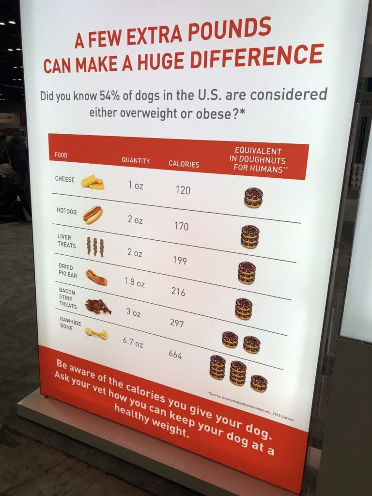 An Insider's Guide to the American Kennel Club Dog Show: Royal Canin Dog Feeding Advice