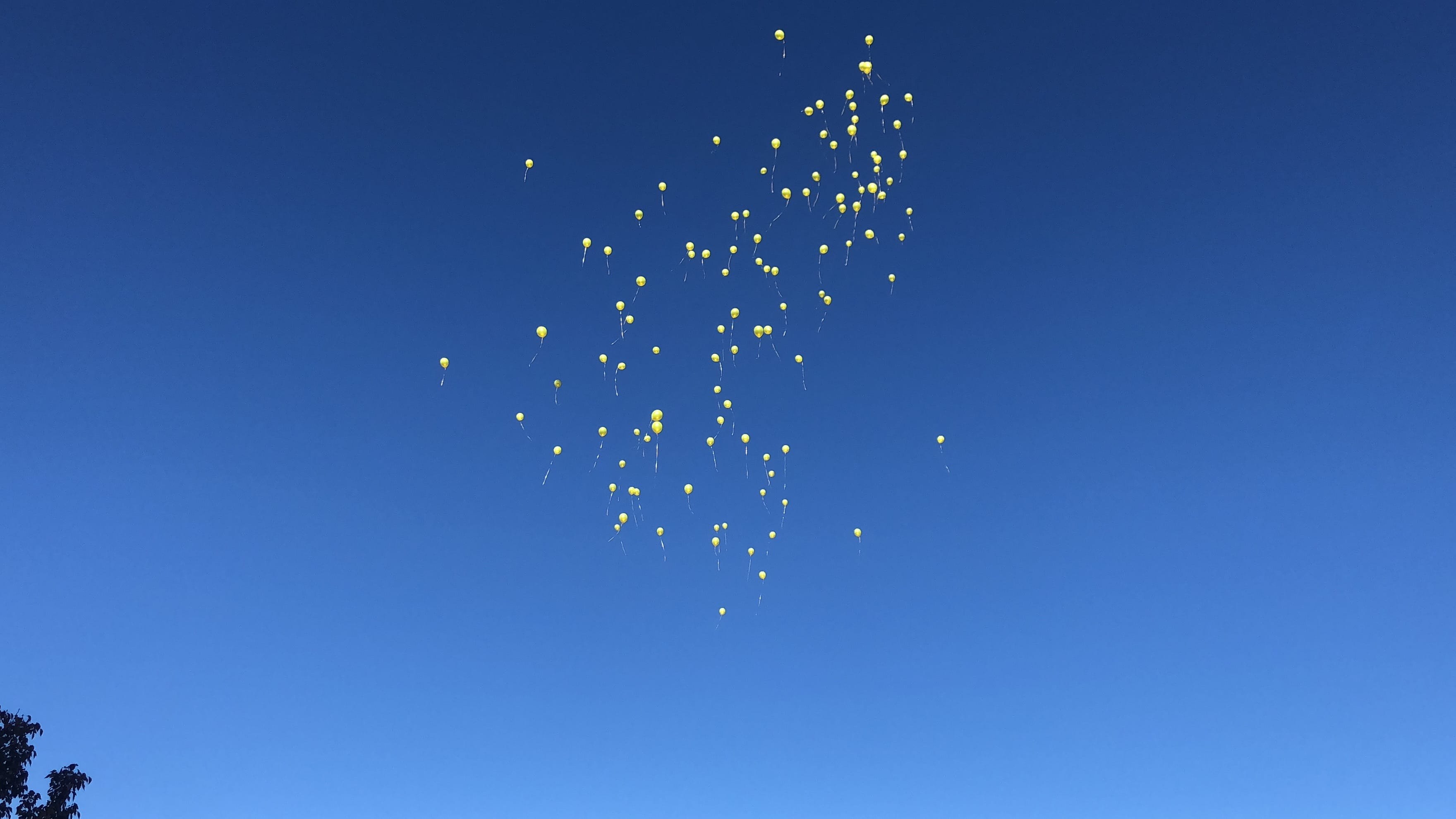 The Color of Heartbreak is Yellow: On the Loss of a Friend - Balloon Releaes